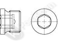 Пробка цилиндрическая, с внутренним шестигранником DIN 908